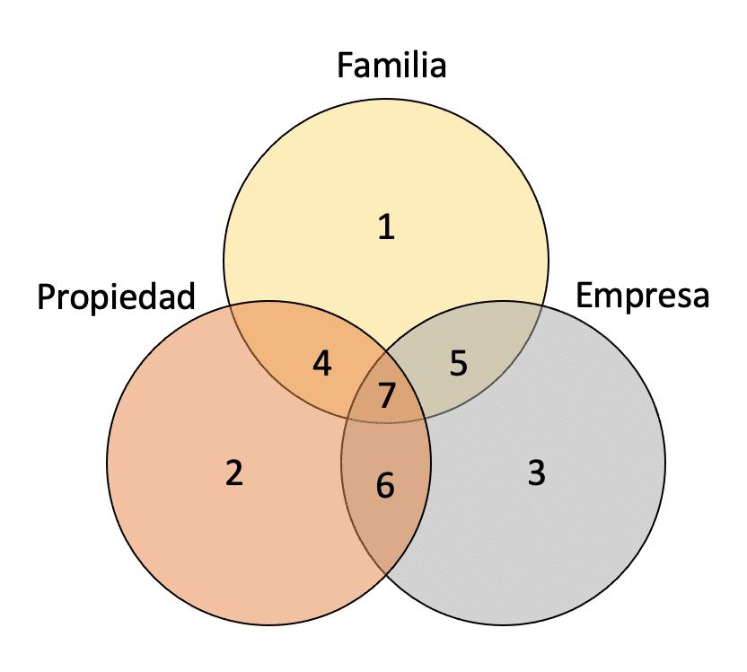 dimensiones de la empresa familiar